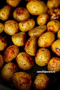 Молодой картофель по-провански